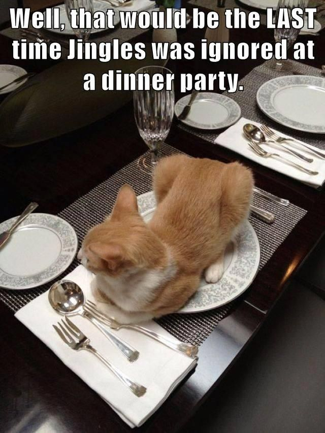 Well, that would be the LAST time Jingles was ignored at a dinner party.