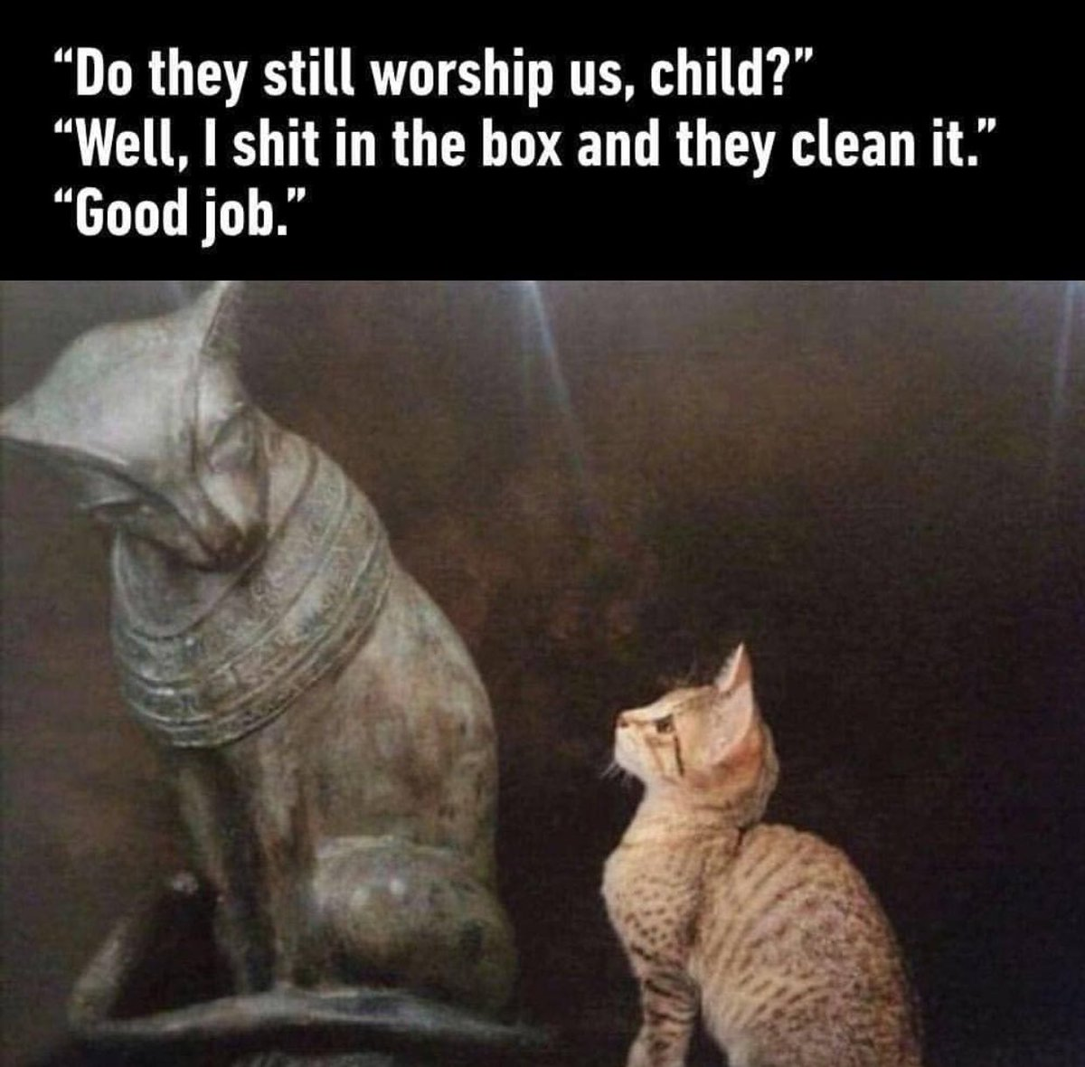 """- """"Do they still worship us, child?"""" - """"Well, I shit in the box and they clean it."""" - """"Good job."""""""