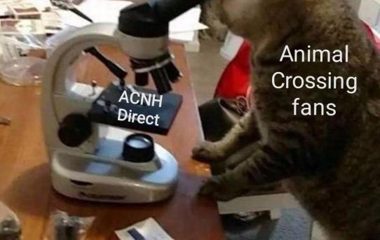 ACNH Direct. Animal Crossing fans.
