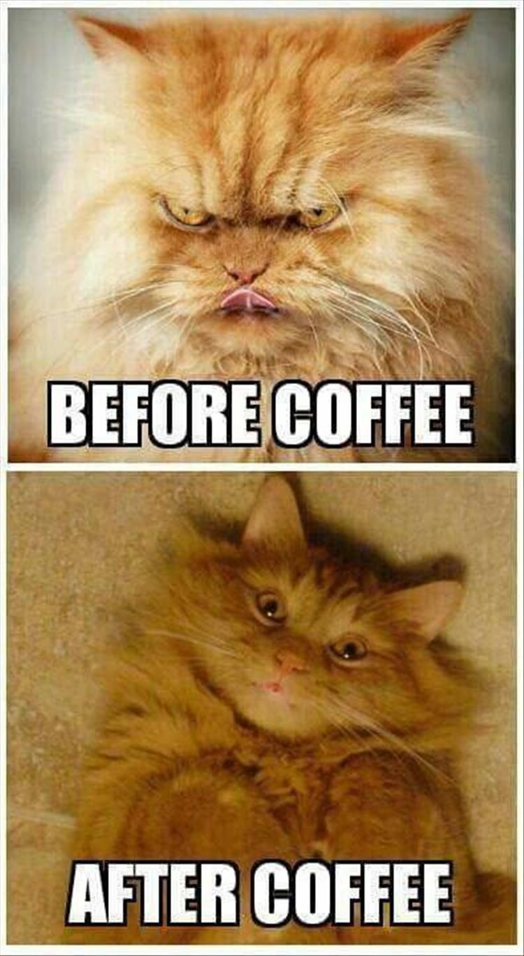 Before coffee – after coffee