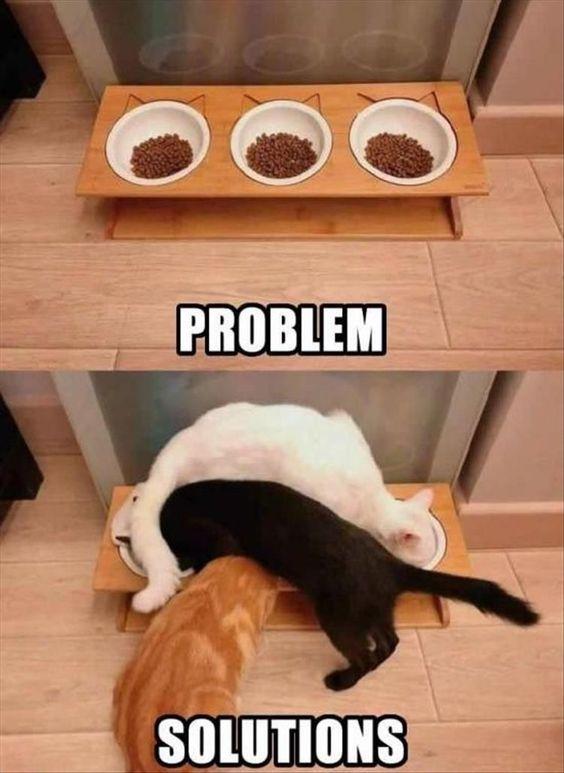 Problem – solutions