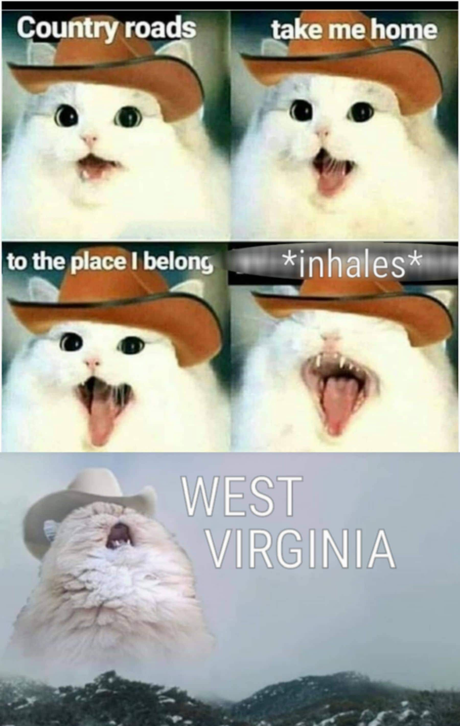 Country roads take me home to the place I belong *inhales* - West Virginia