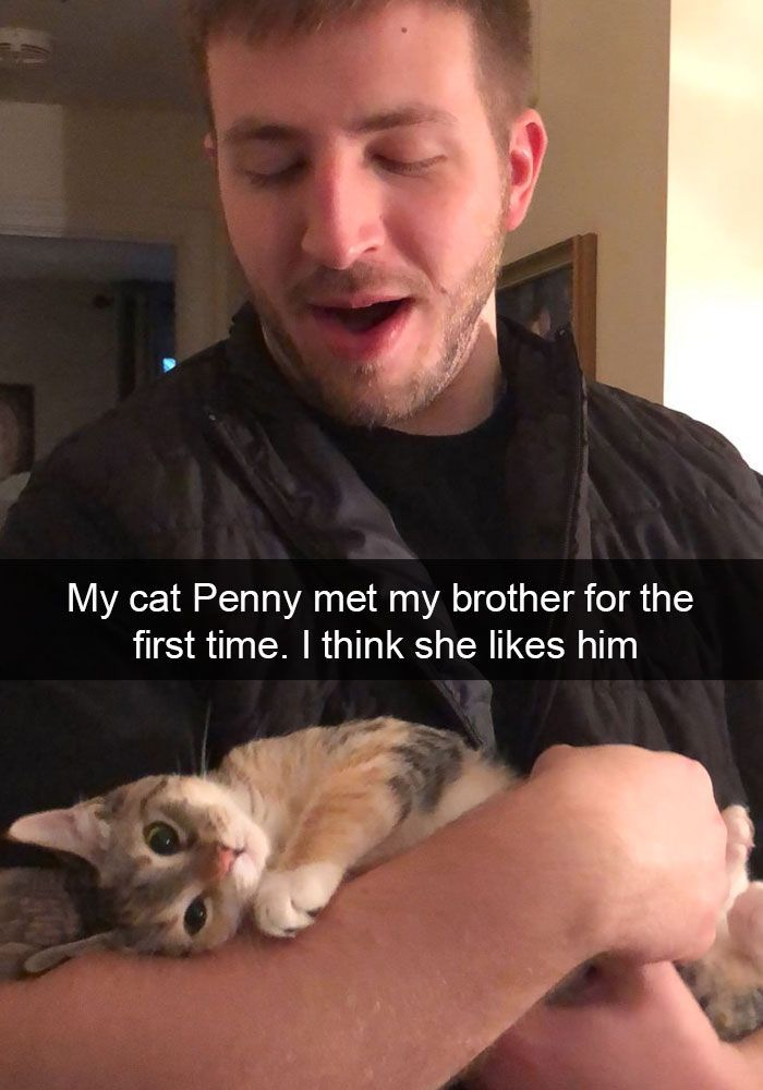 My cat Penny met my brother for the first time. I think she likes him.