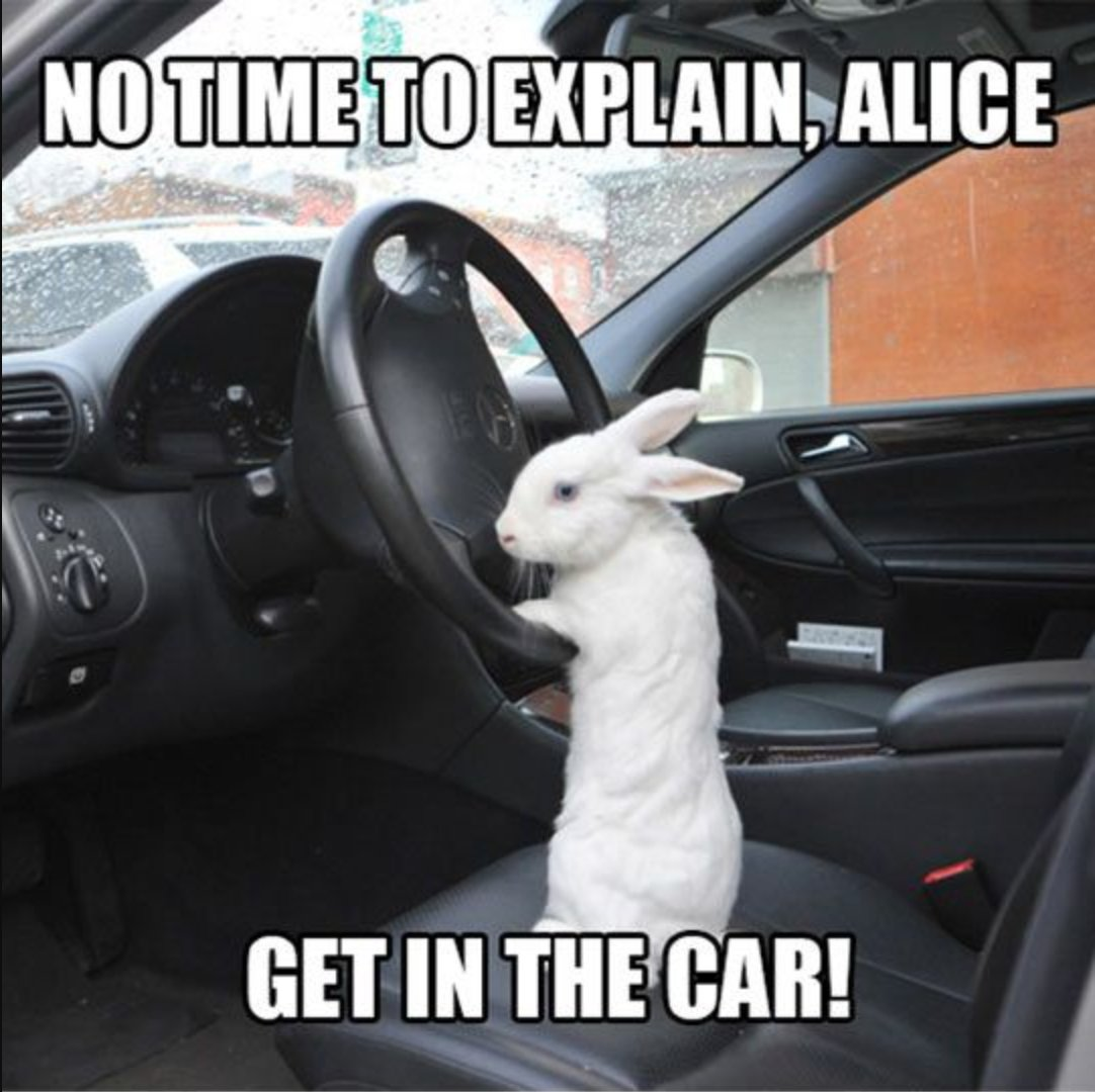No time to explain, Alice. Get in the car!