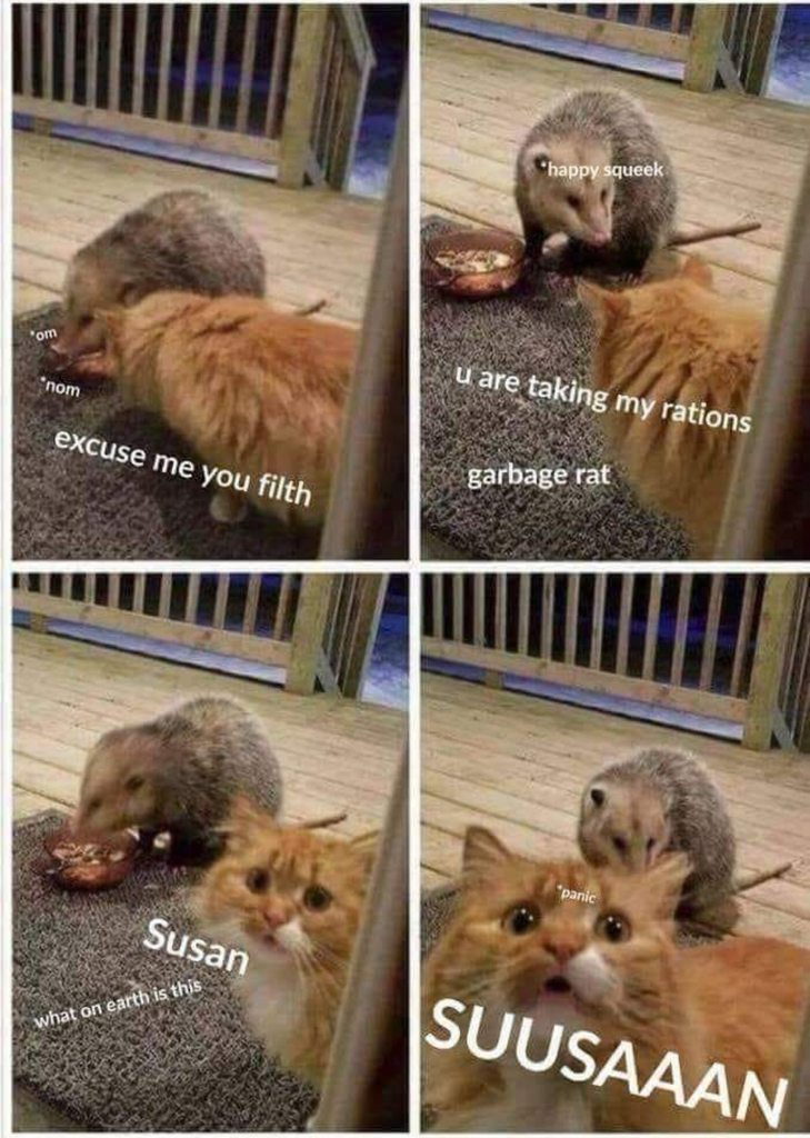 Susan, help!