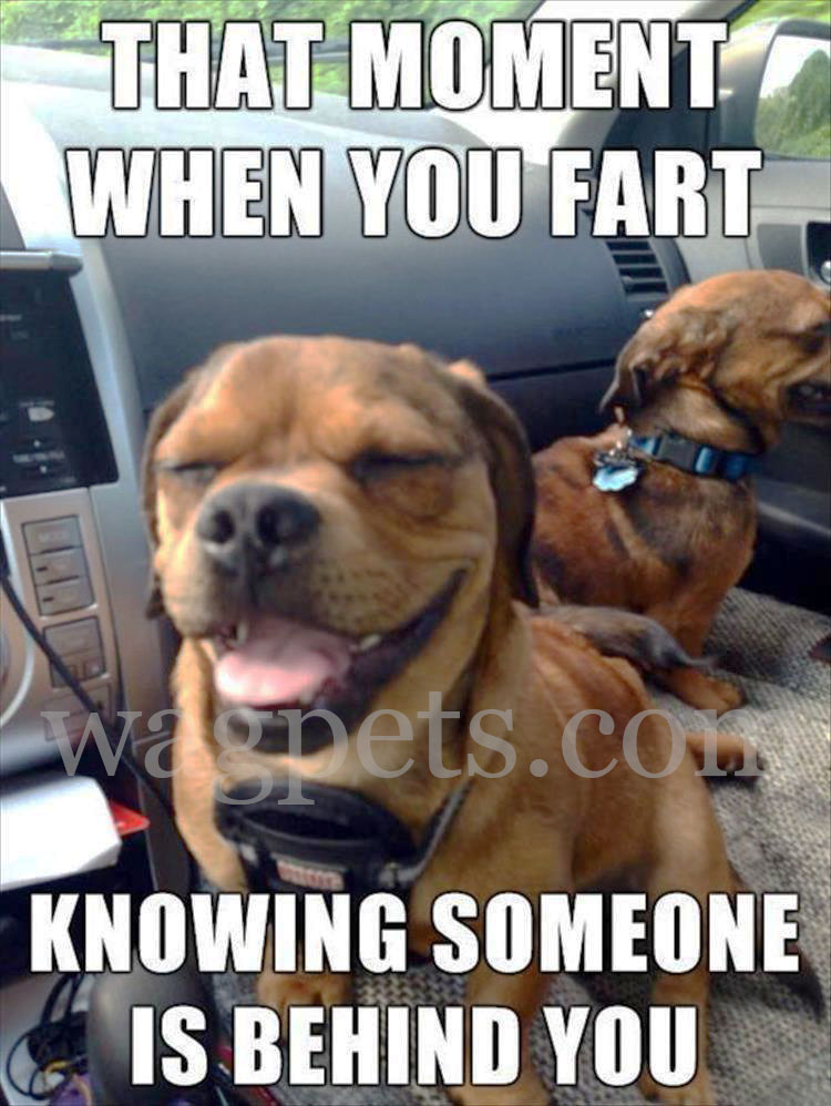 That moment when you fart knowing someone is behind you