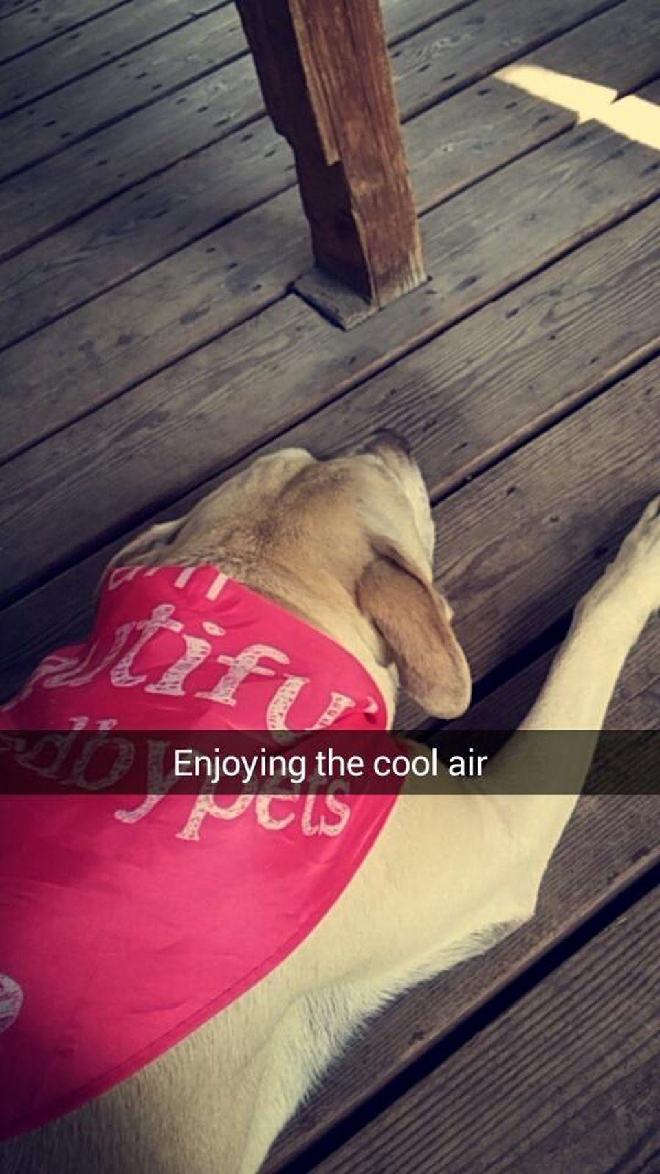 Enjoying the cool air