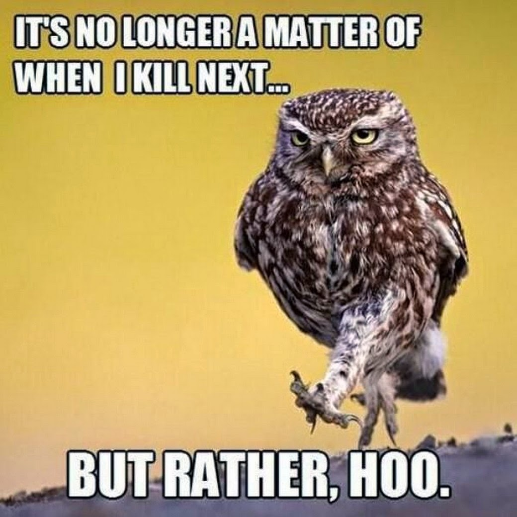 It's no longer a matter of when I kill next… But rather, hoo.