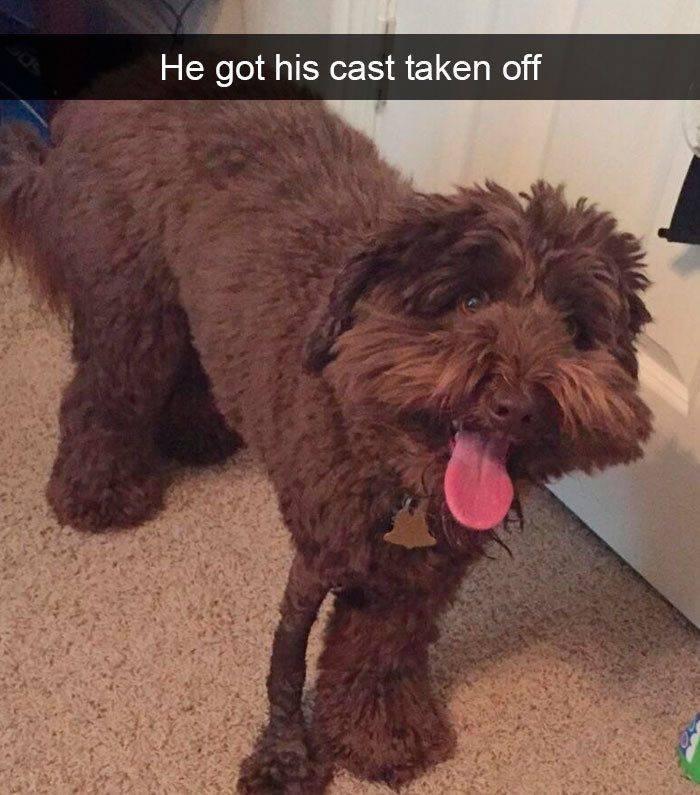 He got his cast taken off