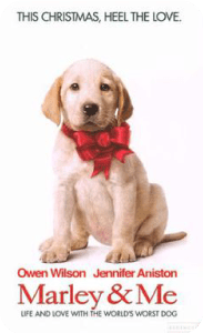 Marley and me - Movies about dogs