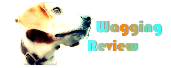 Wagging Review for dog friendly holiday lettings