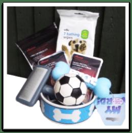wilko dog basket and contest