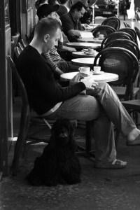 dog friendly cafe Paris