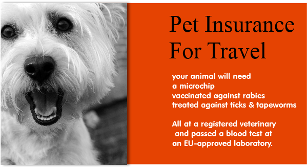 pet insurance requirements for travel