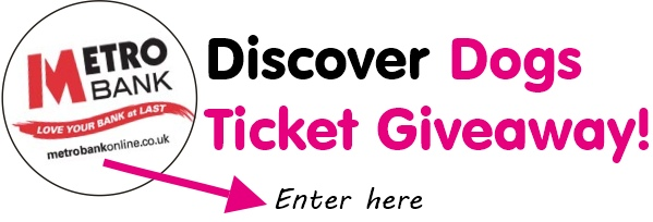discover dogs giveaway