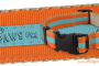 paw paws dog collar and lead review