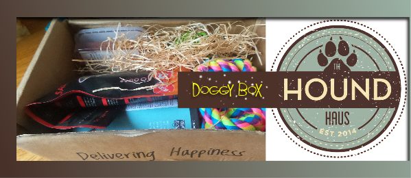 dogg gift box cover