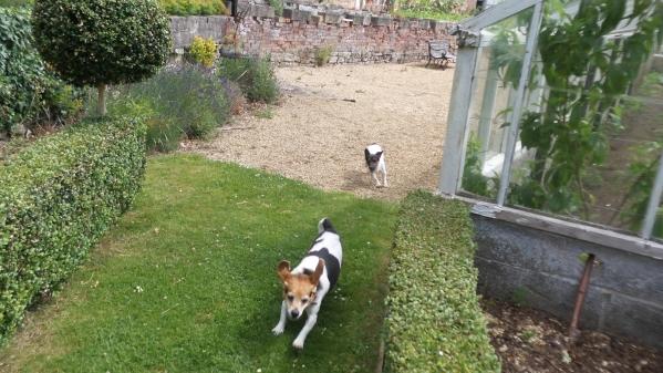 ston easton gardens review
