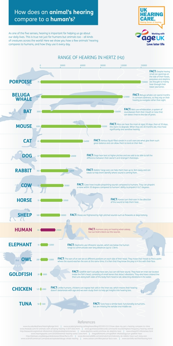 animal hearing infographic-v1