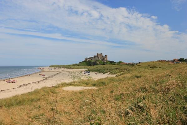 dog lovers Northumberland coast