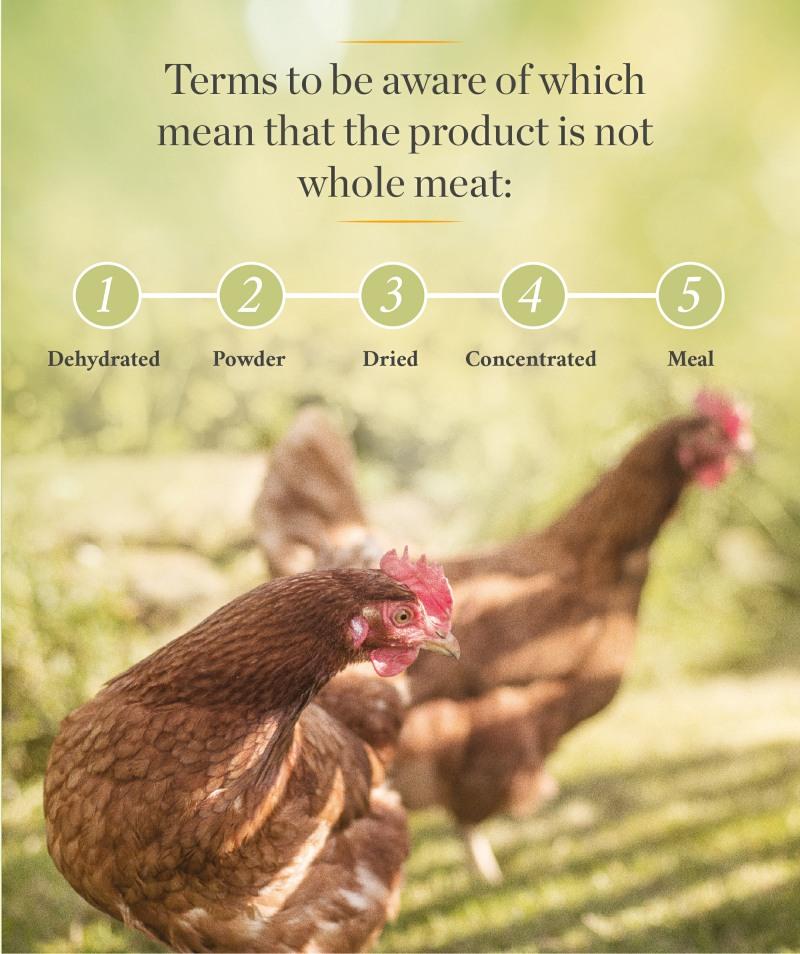 pet food chicken