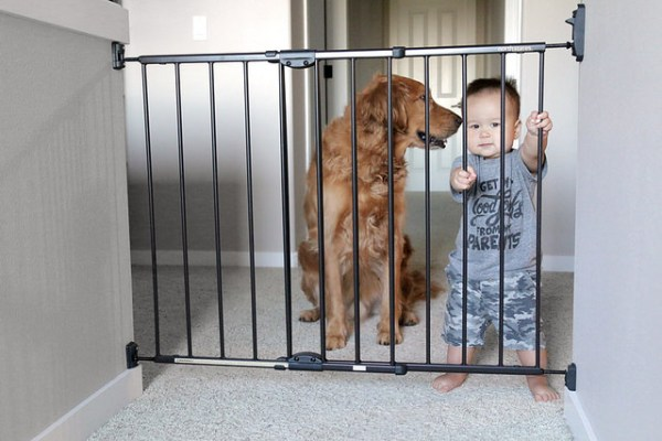 dog safely confined gate