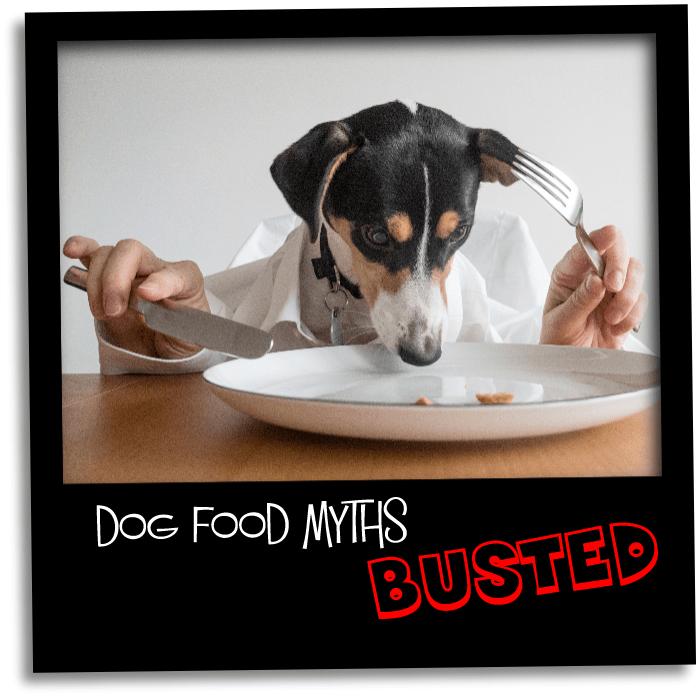 dog food busted gr