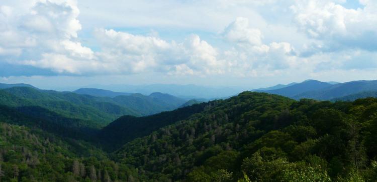 North Carolina Blue Ridge Mountains dog friendly