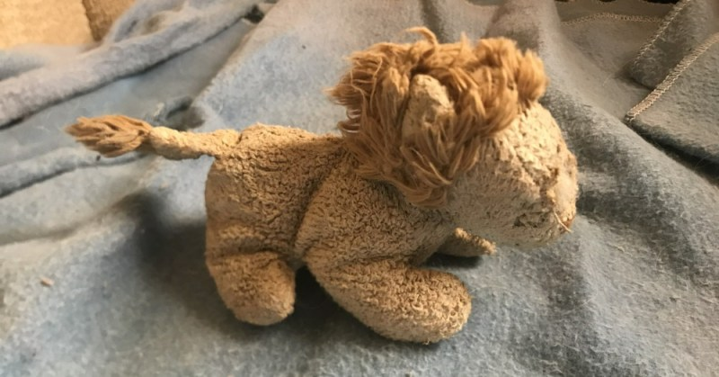 Stuffed lion toy found by Toby