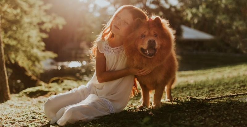 happier pet love