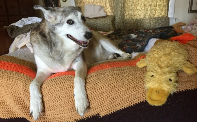 smiling with duckie on the side of the bed toy