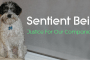 sentient beings cover