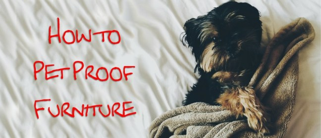 pet proof furniture cover