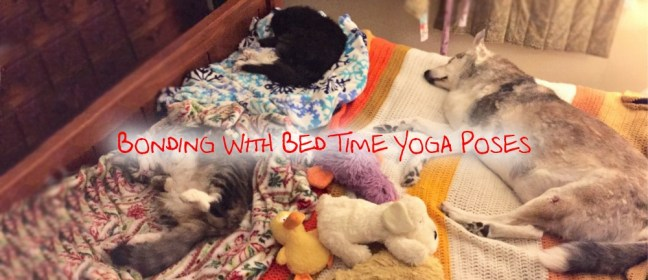 Bonding with bedtime yoga cover