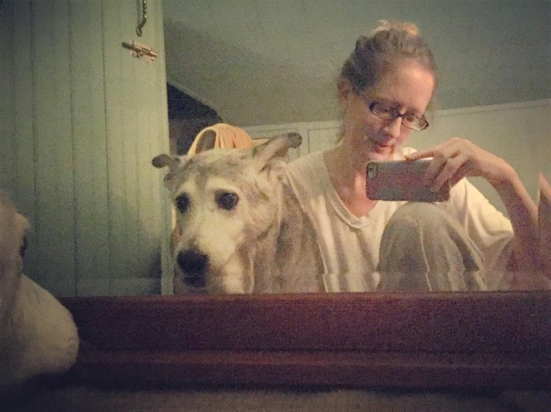 Angel barking and looking at herself in a full length mirror