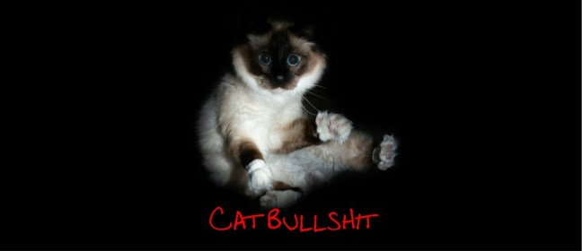 cat bullshit cover
