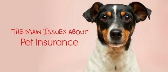 pet insurance cover
