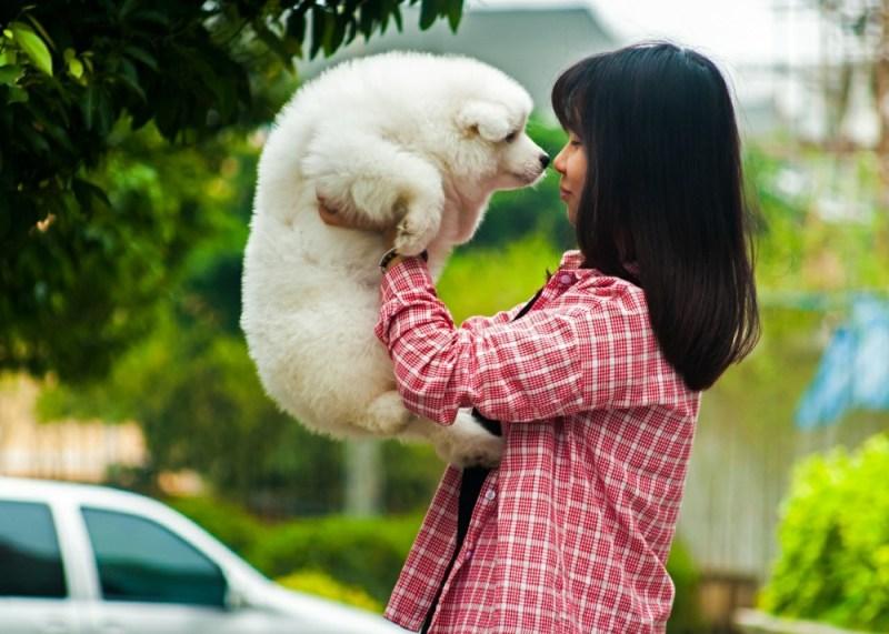 pet parent kissing dog