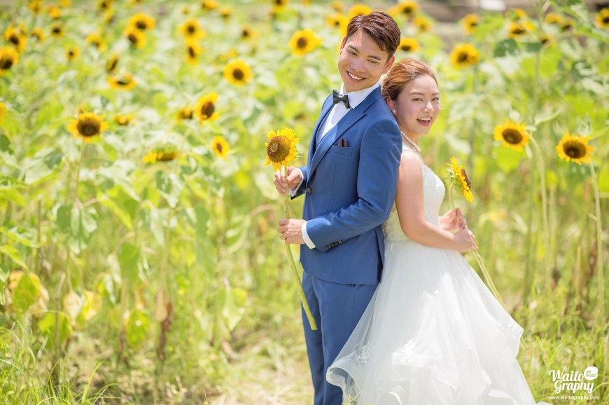 Beautiful couple taking HK engagement wedding photo at a sunflower field in Hong Kong