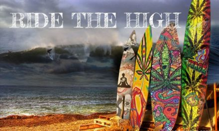Surfing Whilst High, Probably Not The Best Idea