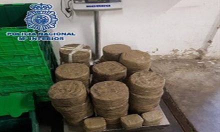 Spanish Police seize 80 kilos of hashish from drug gang on the Costa del Sol