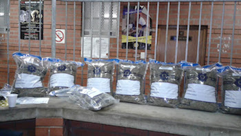 "In South Africa Petrol Attendants Busted For ""Dagga"" & Other Drugs"
