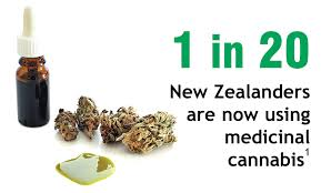 NZ Herald Article: Medical cannabis 'a remarkably useful drug'
