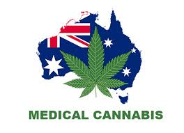 Medical cannabis debate: Australians left in pain by expensive and limited access to drug