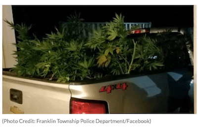 More Car Weed Action