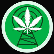Best Podcasts For Stoners….
