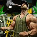 Cannabis Users Are More Fit than Non-users, Study Finds