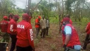 Nigeria:  NDLEA destroys largest cannabis farm in Kogi
