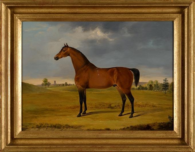 Horse Oil Painting By Gwynn