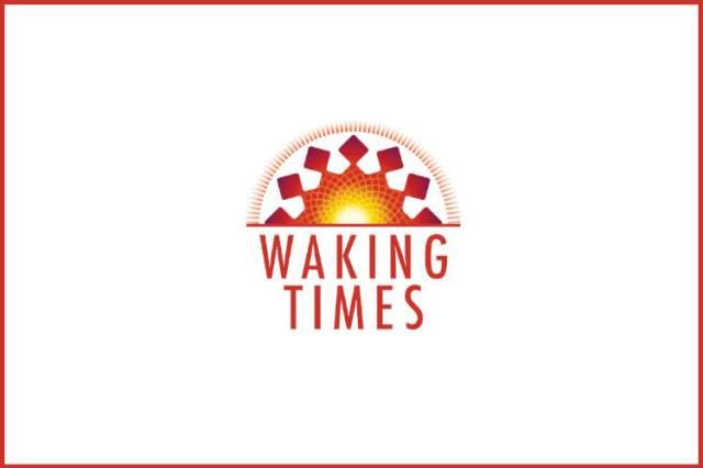 Flickr-farmers market-kaybee07